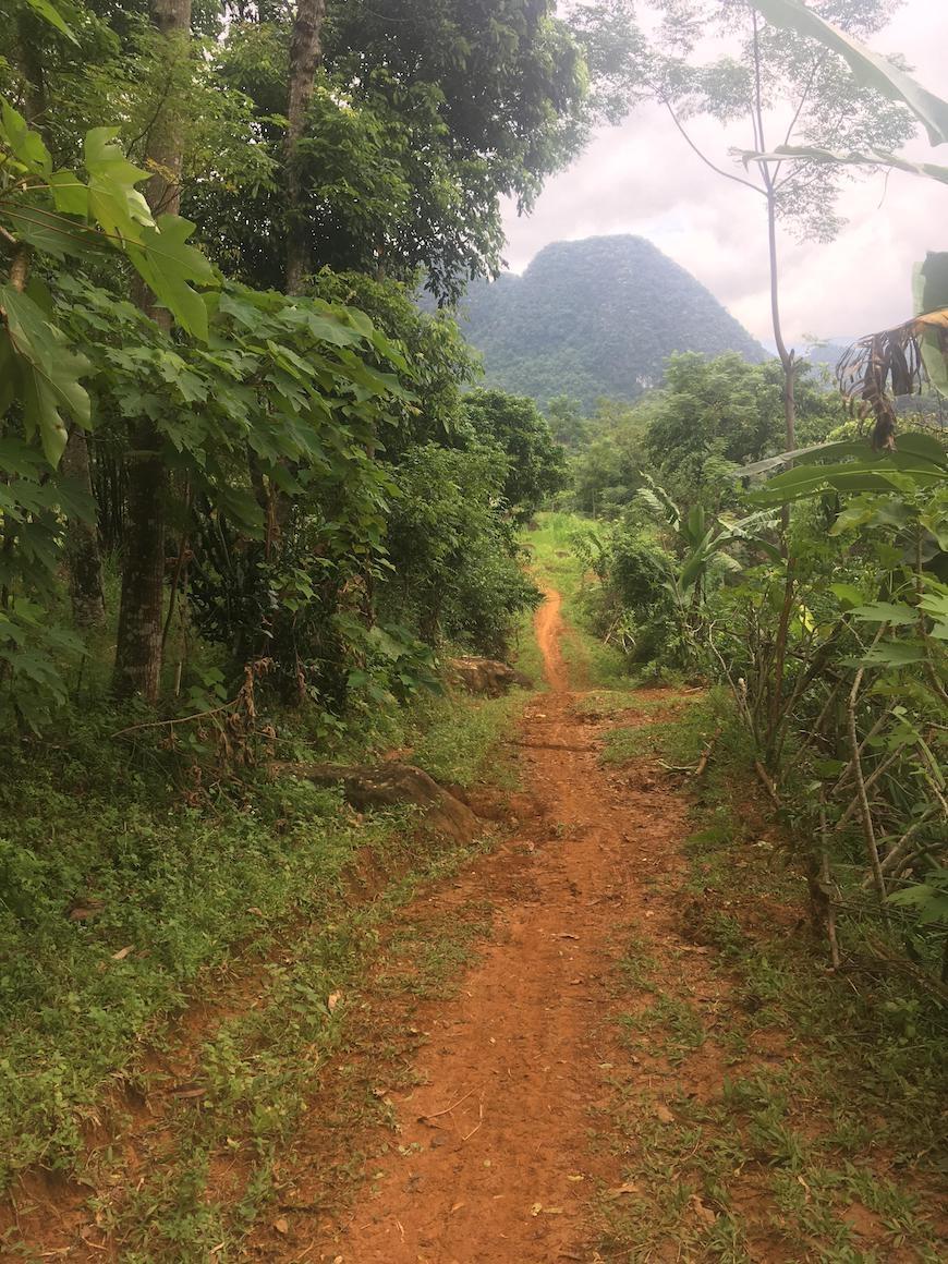 Trailløb mudder vietnam